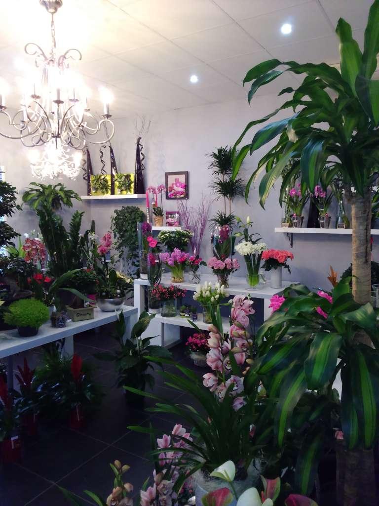 Livraison de fleurs à Saint-Ciers-sur-Gironde
