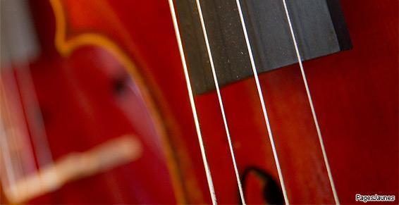 Fabrication d'instruments à cordes frottées - Maîtres Luthiers