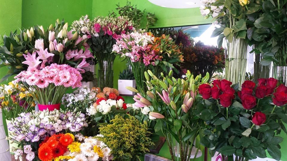 Fleurs coupées - Acacia Fleurs - Fleuriste Cannes