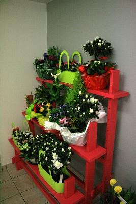 aux fleurs de l'aulne 099.JPG