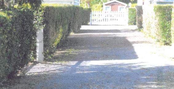 Ribemont-sur-Ancre - Campings
