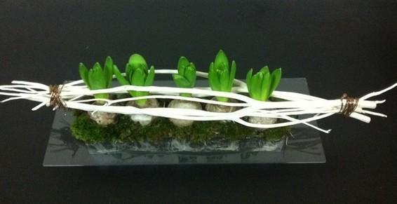 .coupe de jacinthes ou de plante de saison