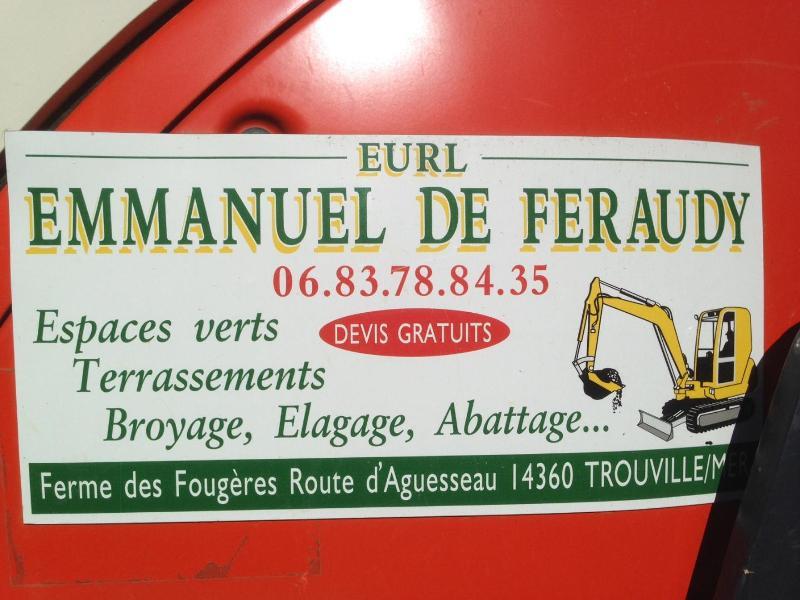 Emmanuel de Feraudy