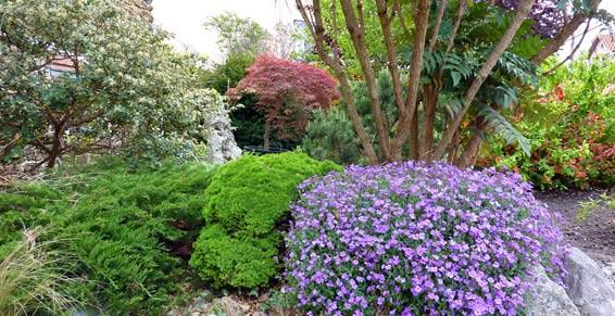 Ambiance Paysage jardinnage 93