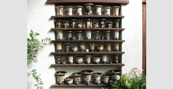 Nishiki Bachi  :pots a orchidee Bonsai Barber