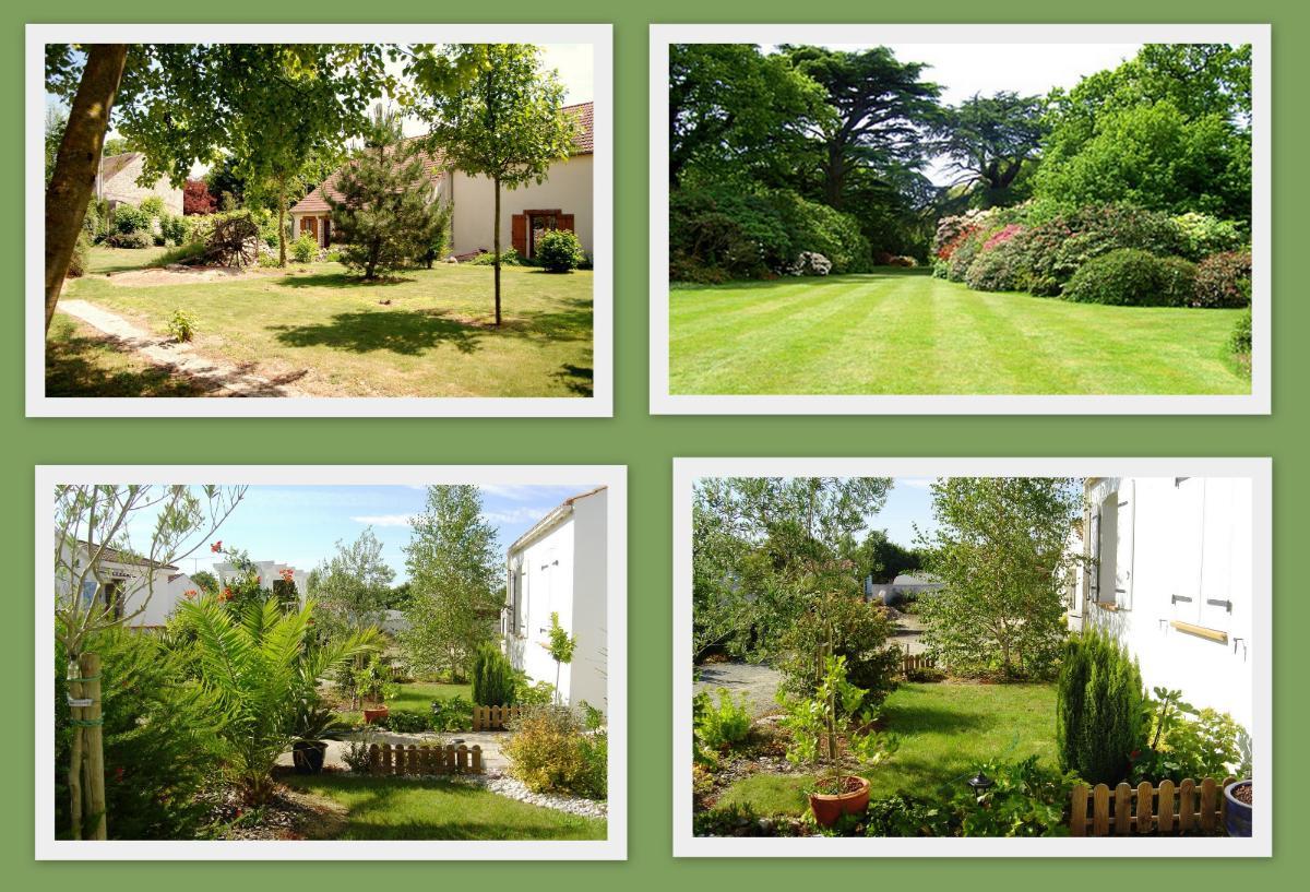photos jardin