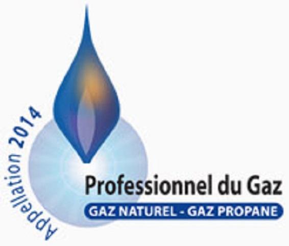 professionnel gaz.jpg