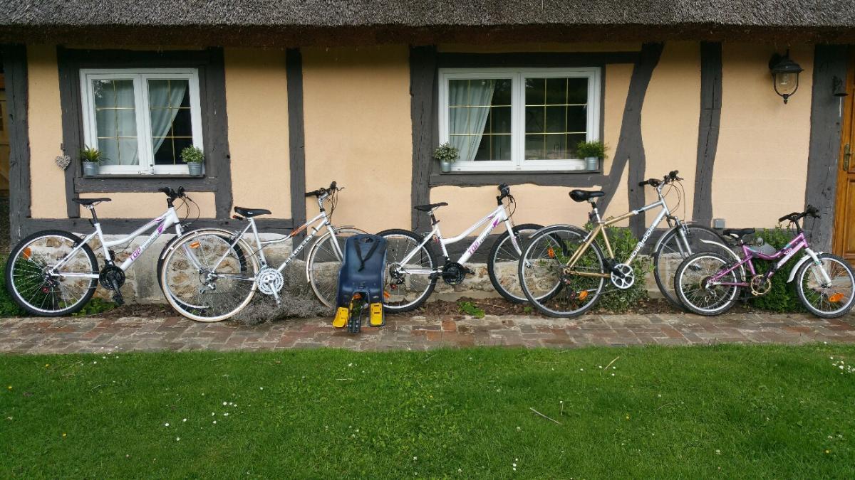 Prêt de 6 velos adulte et possiblité de vélos enfants