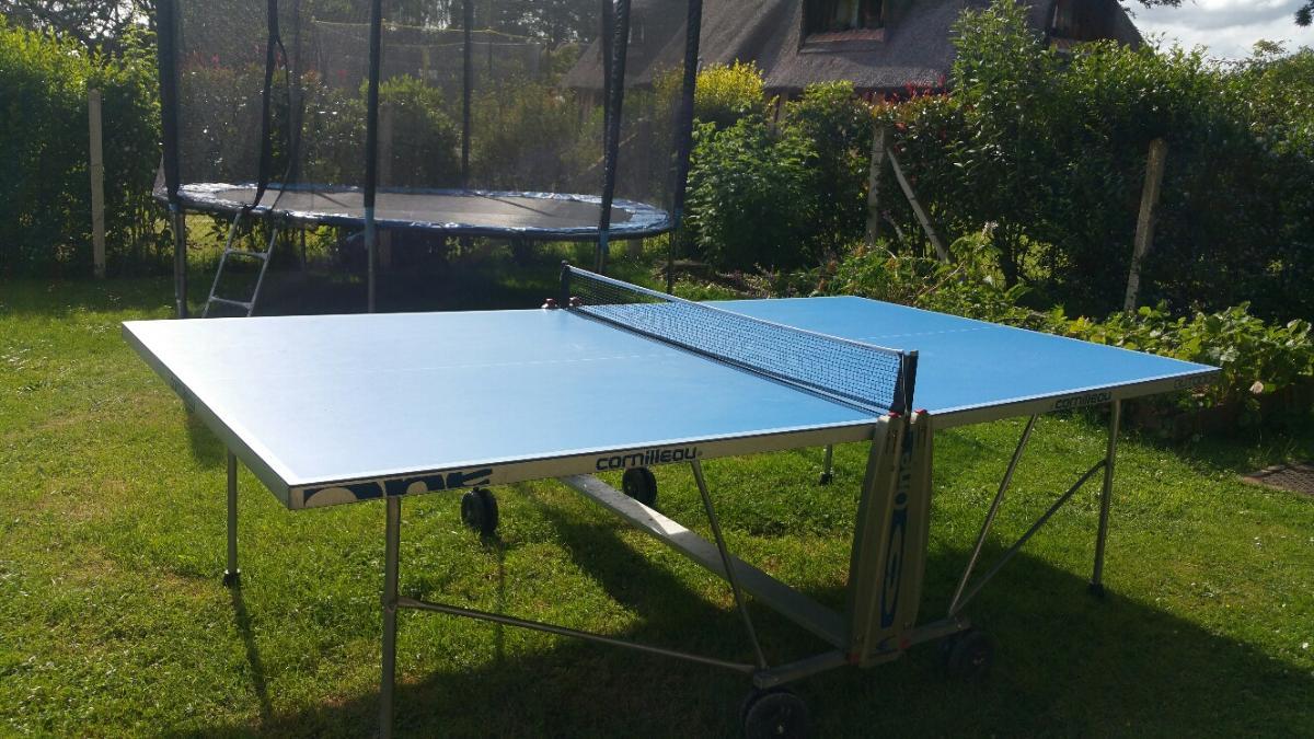 Table et raquettes de Ping Pong à disposition