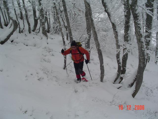 Promenade en raquettes aux Monts d'Olmes (09)