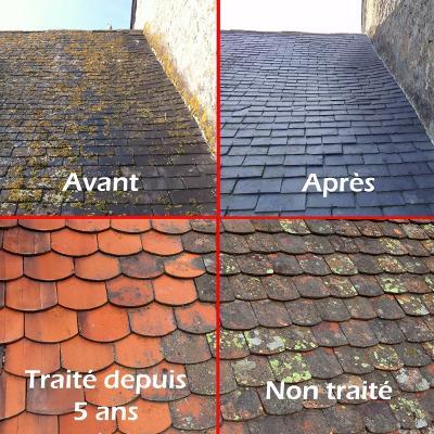 SN Fleouter Normant Traitement de toiture à Concarneau.jpg