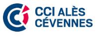 Logo cci nimes.PNG