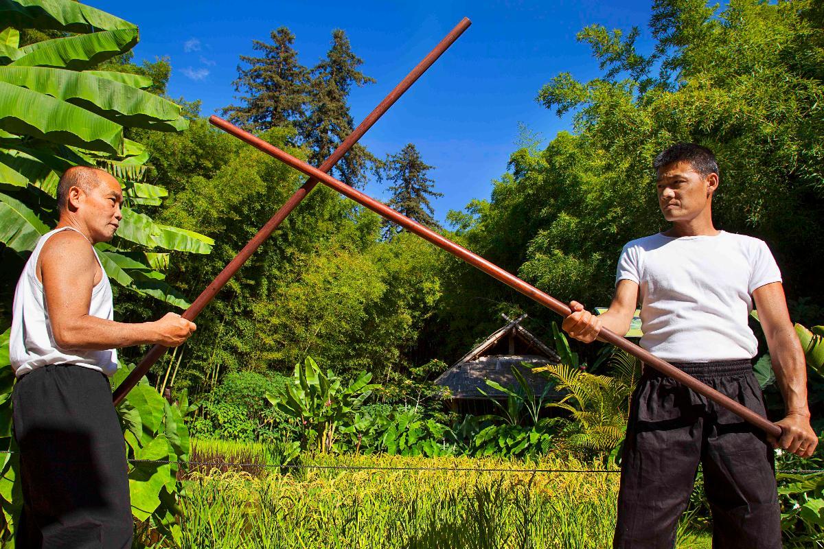 Tai-Chi bâton