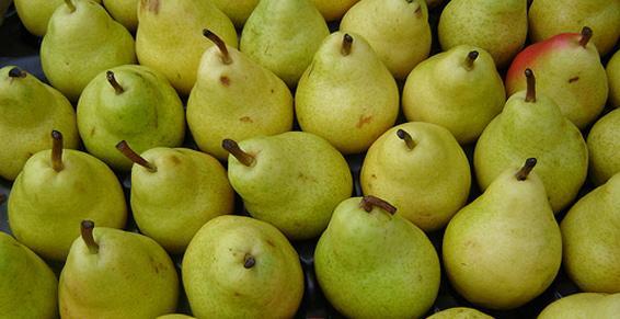 Jus de poire - pressoir de la vallee Bennwihr