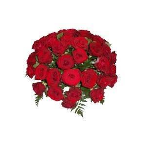 0001_a__florajet_5383_0302_1521424925