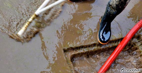 Vidange, curage - Évacuation d'eau raclette