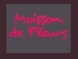 Moisson de Fleurs à Castres