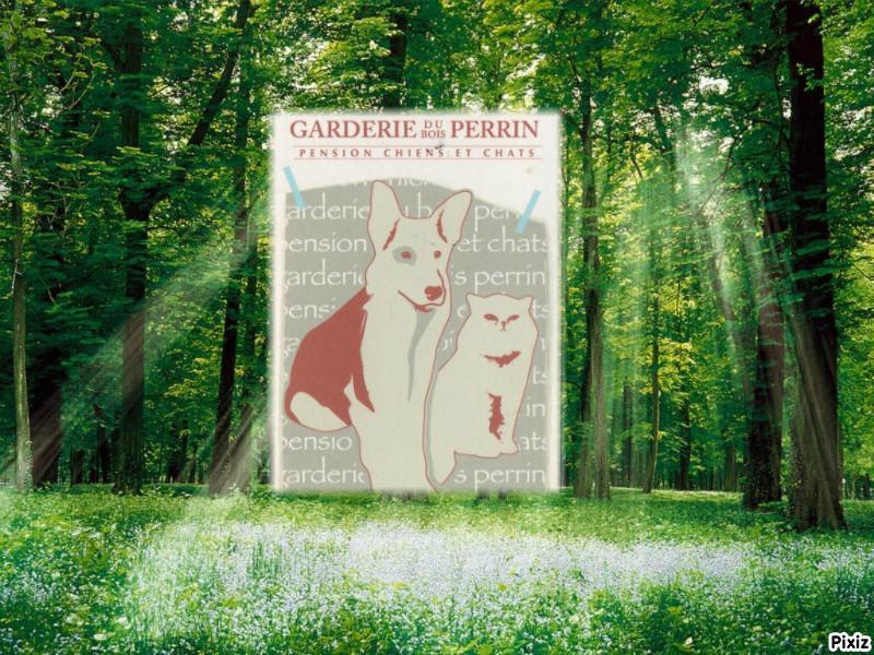 Garderie du Bois Perrin N° Certificat de capacité 47-004-AC